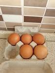 체코에서 만드는 찜질방 계란