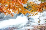 오대산 가을 풍경