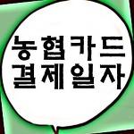 농협카드 결제일별 이용기간 확인