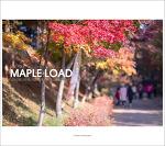Location_#01. 독립기념관 단풍나무길