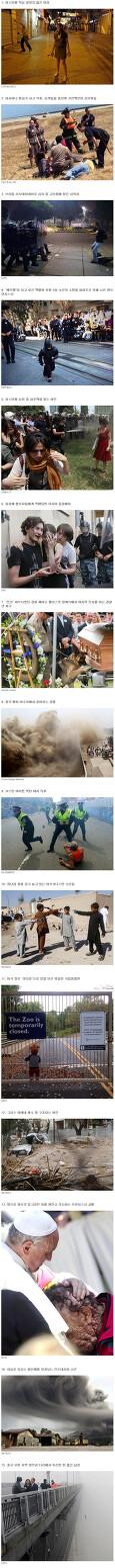 2013 강렬했던 사진 30장