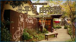 [일본 오이타현 유후시] 온천과 예술을 담은 로하스 시골마을, 유후인 由布院 ① 유노츠보상점가湯の坪街道 /하늘연못의 일본 소도시 여행기