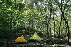 [강원도-양양] 미천골자연휴양림 캠핑 6.6~6.8 울창한 계곡과 숲!