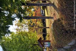가을 다가오는 캠퍼스 풍경