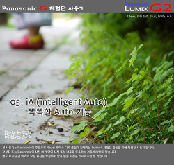 [DMC-G2] 05 iA(=intelligent Auto)