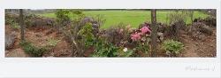 정원꾸미기, 2030세대 귀농일기 - 제주에서 살면 이정도는 되야지~