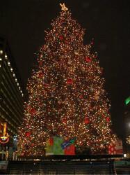 즐거운 크리스마스 되세요..