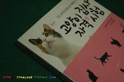 고양이 책 소개 고양이 집사 자격시험