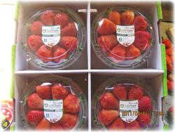 [딸기직거래] 딸기 '한들농장'