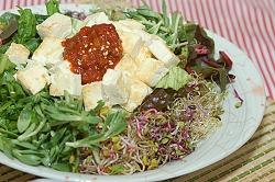 두부비빔밥이 웰빙음식입니다..