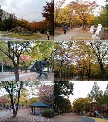 가을 출근길, 과천 중앙공원