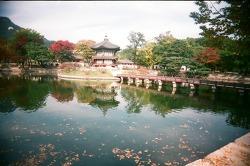 이 가을- 아름다운 우리의 궁궐