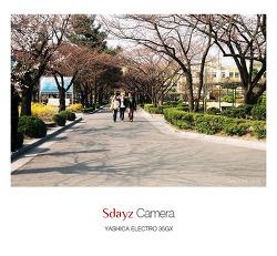 [Yashica 35GX] 정독 도서관 :: 벚꽃나무아래 [벗:친구]와 함께 걷는 길