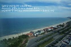 [베트남 다낭/호이안 자유여행 #2] 아라카르트 호텔(a la carte danang) 후기 +  다낭에서의 첫 저녁 Blue Whale(CAVOIXANH) + 롯데마트 다낭