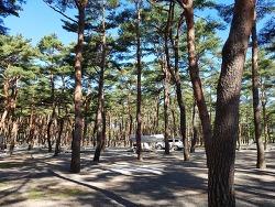 [캠핑] 늘 자연 힐링되는 '양양솔밭캠핑'