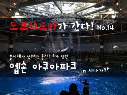 [도쿄/시나가와/여행/볼거리] 엡손 아쿠아 파크 EPSON AQUA PARK- 박진감 넘치는 돌고래 쇼