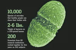 자연계 최대의 주인 '미생물'과 함께 사는 세계-유용미생물 EM