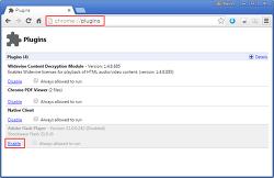 브라우저별 Adobe Flash Player Plug-in 설정