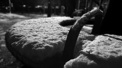 [걷는 바이노럴 레코딩] #2. 눈 위 걷기