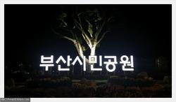 하야리아 부대가 사라지고 탄생한 부산 시민공원