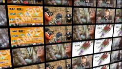 한국산원초산삼협회 을미년 회원 방송출연 동영상
