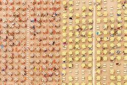 김감독 사진강좌 #10. 역대급 패턴 사진의 비법과 세계에서 가장 비싼 사진