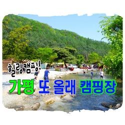 가평 또올래 캠핑장 시설 소개및 3박4일 후기 (아이들 놀기 좋은 캠핑장)
