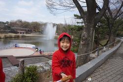 올림픽공원 벚꽃 피크닉