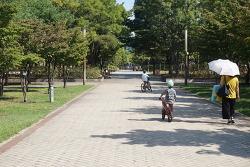 서울숲 놀이터 하루 보내기
