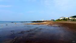 검정색 뿌린 듯… 검푸른 바다 '삼양검은모래해변'