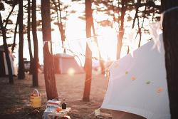 [태안/몽산포] 몽산포 캠핑의 추억 (몽산포해수욕장)