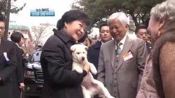 박근혜와 진돗개