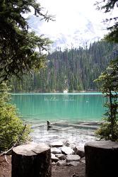 [Joffre Lake] 빛나는 에메랄드빛 호수 셋이 숨어있는 산