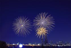 2014 불꽃축제