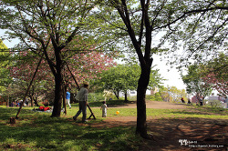 메구로 야트막한 언덕 위 ::사이고야마공원(西鄕山公園)