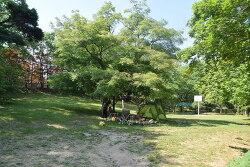 서울 근교 당일 캠핑하기 좋은 금원수목원