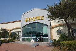 파주 금강산랜드 워터파크 후기