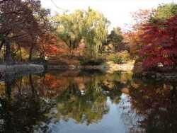 가을빛 추억, 2000