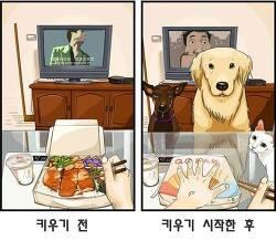 반려동물을 키우기 전과 후 일상모습