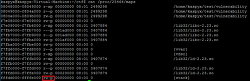 Buffer Overflow - RTL(Return to library) 기법