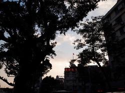 광저우일상 / 태풍 니다 NIDA / 망고요구르트 / 신혼 / 데이트