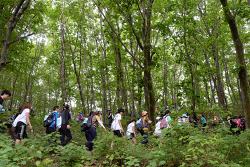 하늘숲길걷기축제, 참가자 혜택 푸짐해서 좋아요