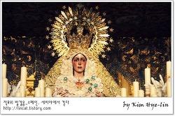 [적묘의 스페인]세비야 눈물흘리는 기적의 성모, 마카레나 성당,성지주일,Basilica Macarena