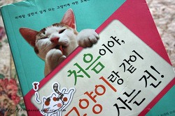 고양이책 리뷰, 처음이야 고양이랑 같이 사는건