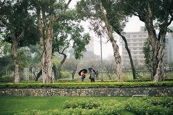 [대만여행] 비내리던 10월 타이페이 '스린관저공원' (22pics)