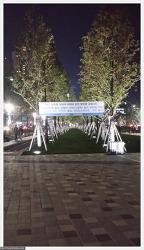 송상현 광장 야경