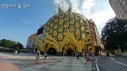 중국하이난 자유여행 4박6일 여행후기 11탄 - 대동해 파인애플쇼핑몰(5일차)