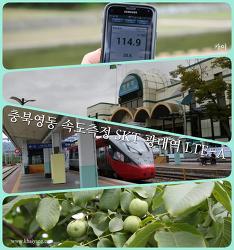 SKT 광대역 LTE-A 측정, 충북 영동역에서 만난 거스 히딩크 감독?