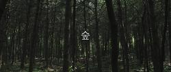 숲 (Forest)
