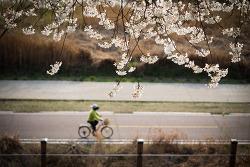자전거를 탄 풍경